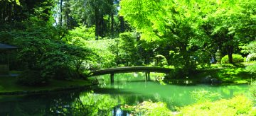 Nitobe japanese garden